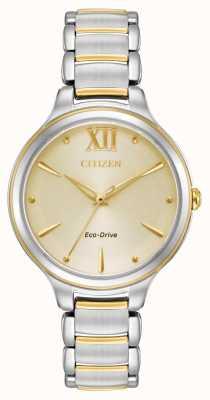 Citizen Womens Eco-Drive zweifarbig goldfarbenes Zifferblatt wr50 EM0554-82X