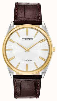 Citizen Stiletto | Männer Öko-Antrieb | braunes Lederband | weißes Zifferblatt AR3074-03A